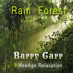Rain Forest - MP3 Single