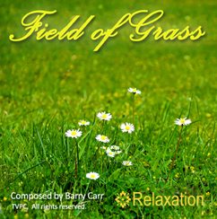 Field of Grass - MP3 Single